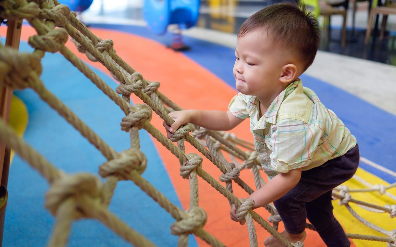 early childhood brain development